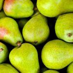 Ondertekening overeenkomsten Fruit NL