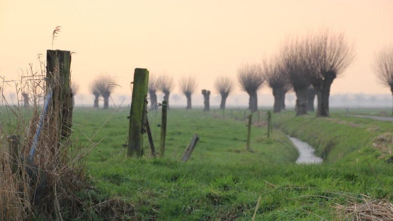 """Versterking """"groen"""" vrijwilligersnetwerk gemeente Buren"""