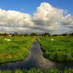 Controle buitengebied gemeente Buren