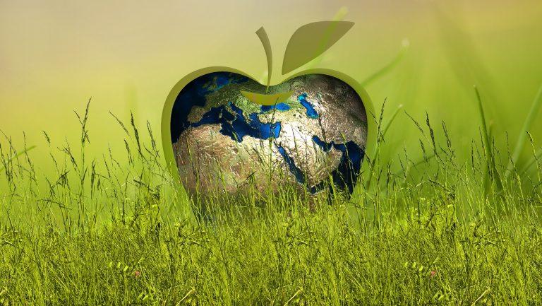 Wilt u energieneutraal wonen?