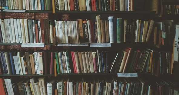 Bibliotheek in Lienden weer open